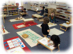 montessori-pathways